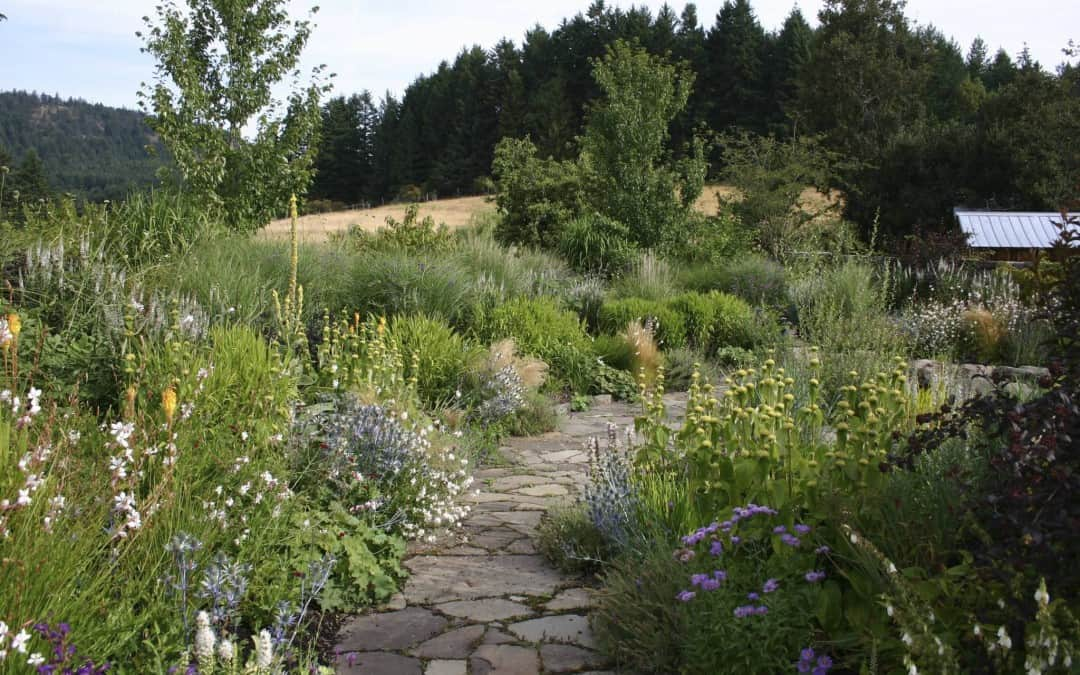 Landscape Sustainability-Designing this into your landscape