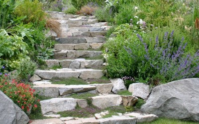Eight Questions To Ask Your Next Landscaping Company To Protect Yourself