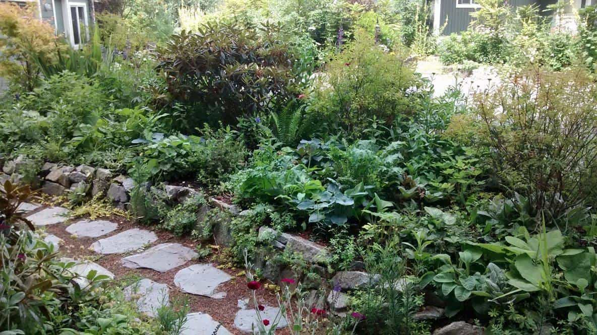 Parksville permaculture