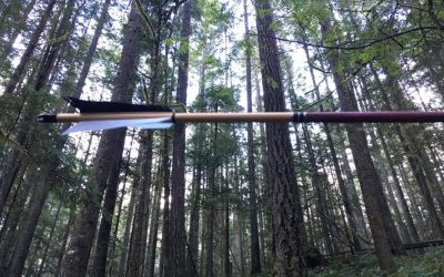 "Upcoming workshop-""Grow your own Weapons"" : A Permaculture Perspective to Primitive Archery"